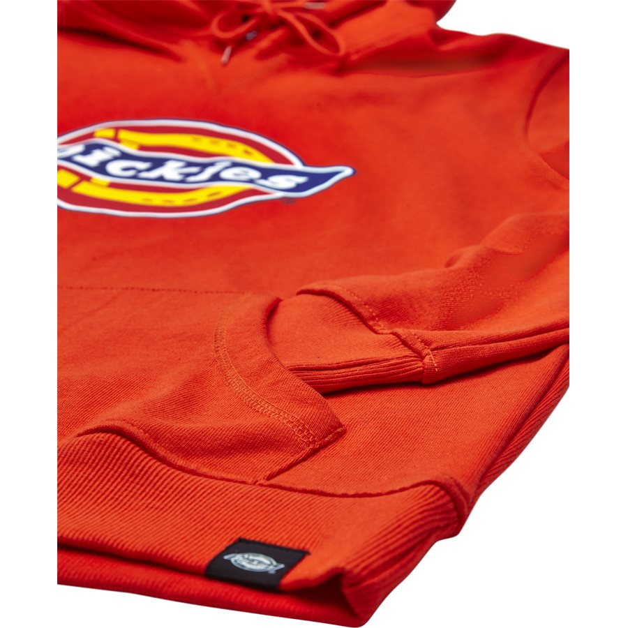 NEVADA. - Nevada Sweatshirt - Sweatshirts - Regular - ORANGE - 4
