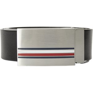 Corporate Plaque Belt Corporate Plaque Belt | Sort