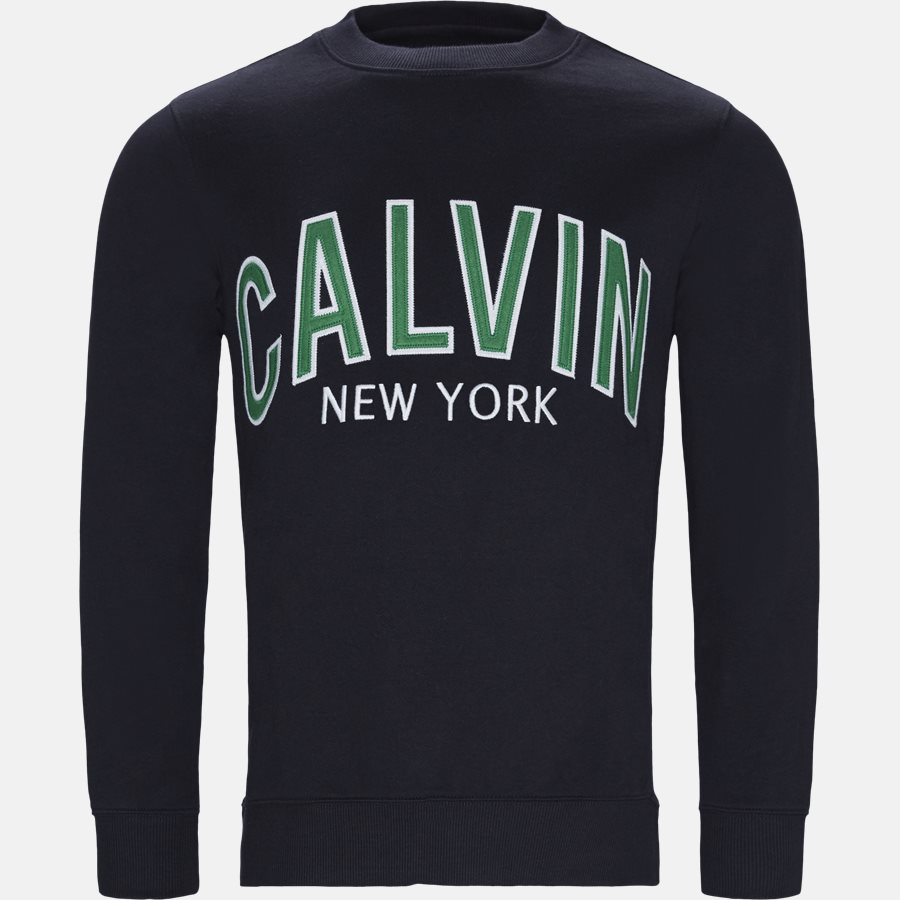 J30J311249 ALVIN GRAPHIC CREW NECK - Sweatshirts - NAVY - 1