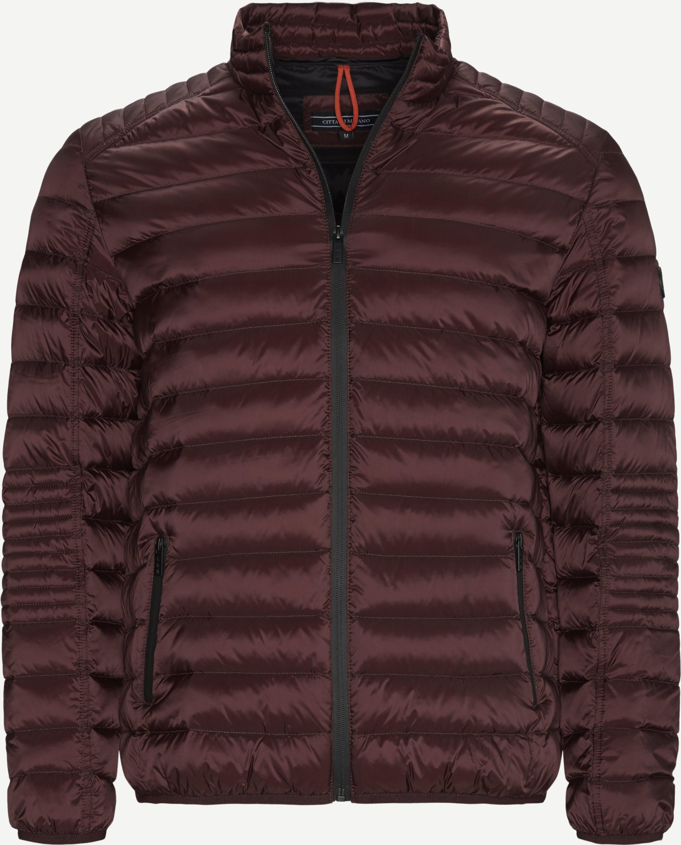 Jackets - Regular - Bordeaux