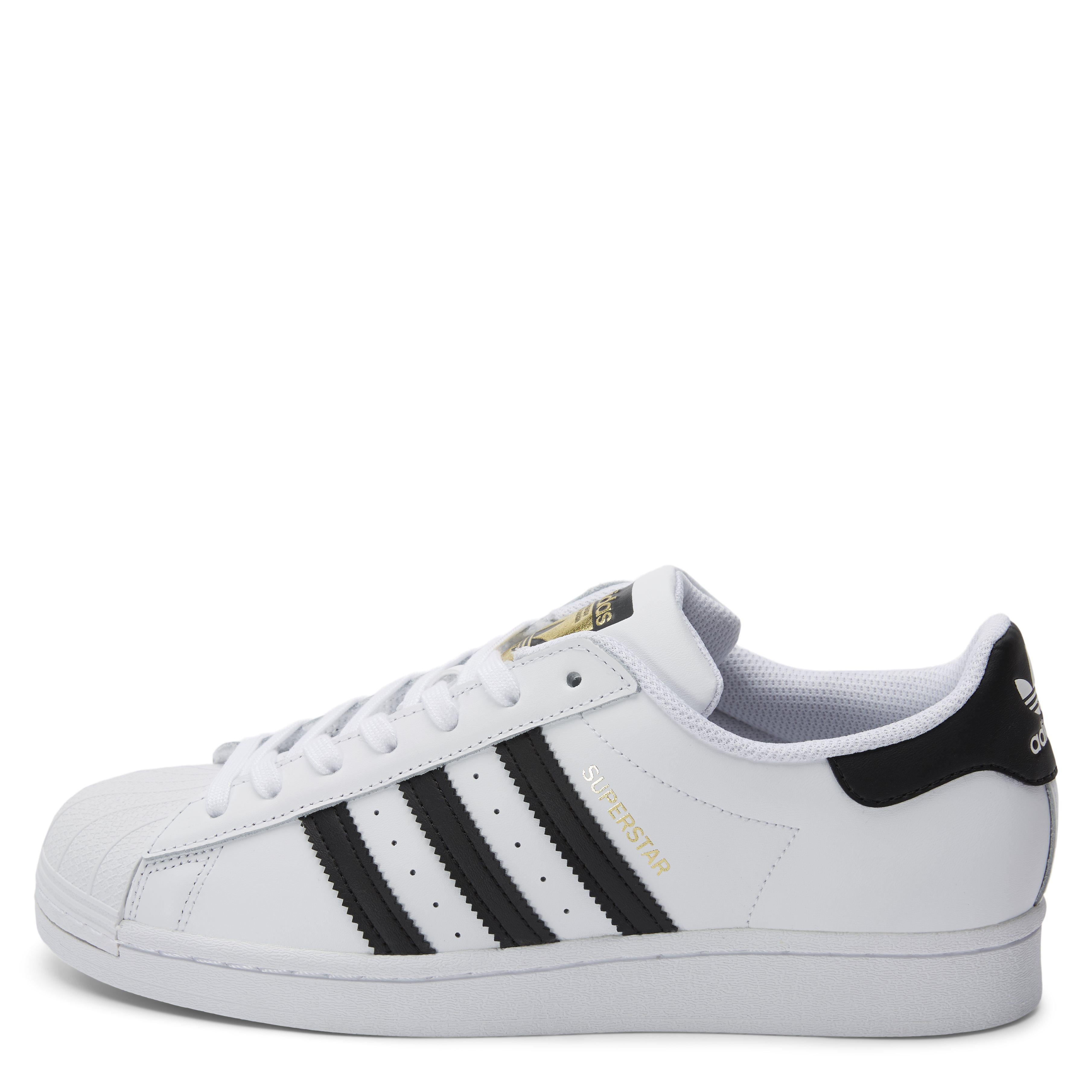 Superstar Sneaker - Sko - Hvid