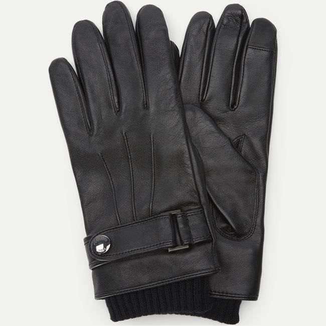 Hakani-TT Gloves