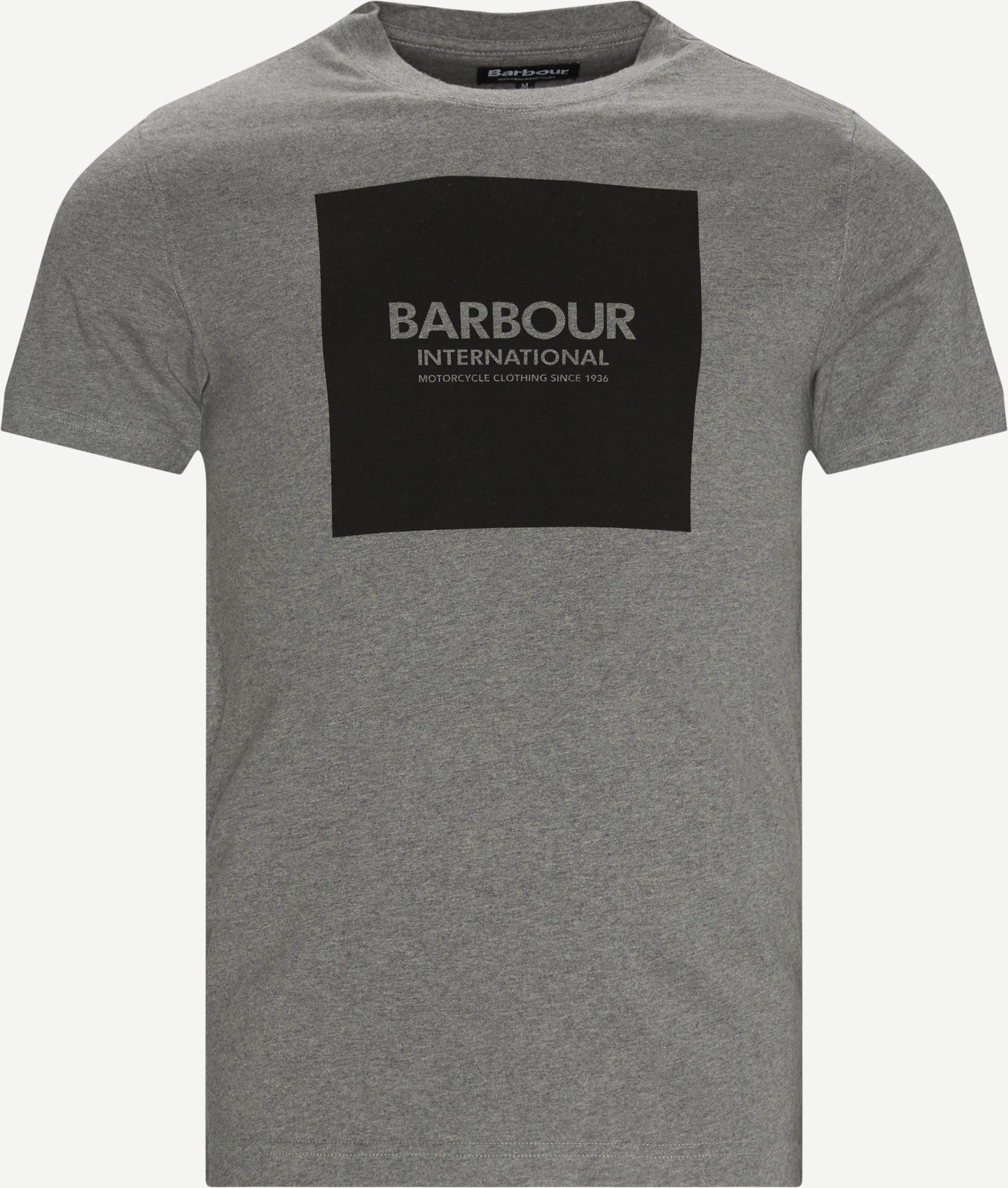 International Block T-shirt - T-shirts - Regular - Grå