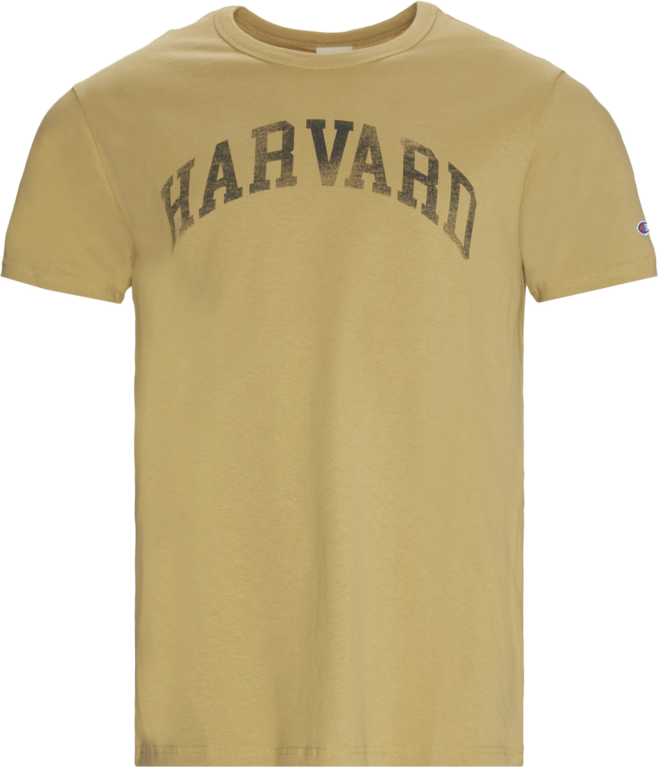 Harvard Tee - T-shirts - Regular fit - Sand