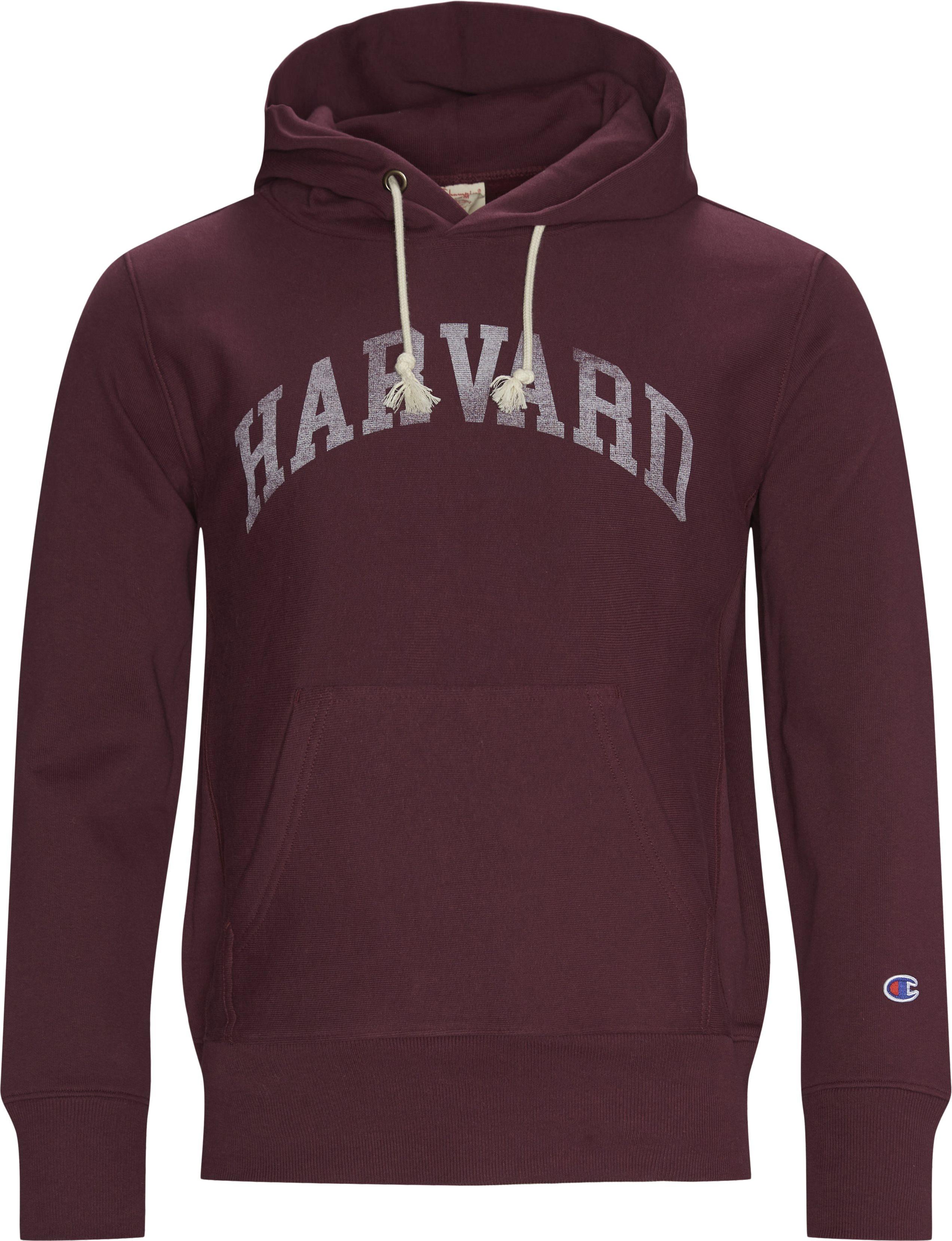 Sweatshirts - Regular fit - Bordeaux