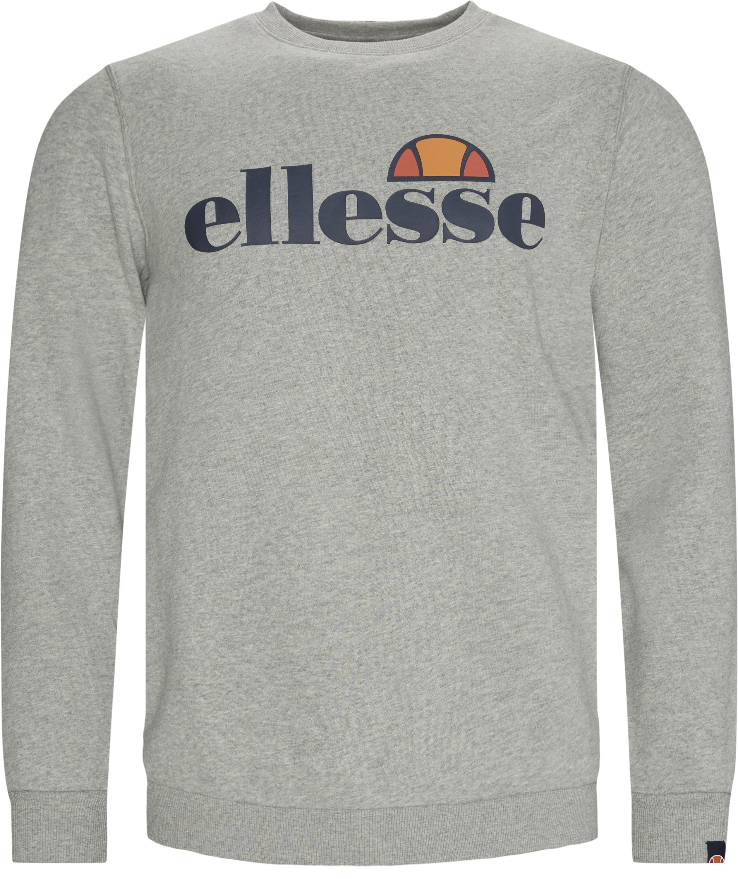 Succiso Crewneck Sweatshirt - Sweatshirts - Regular - Grå