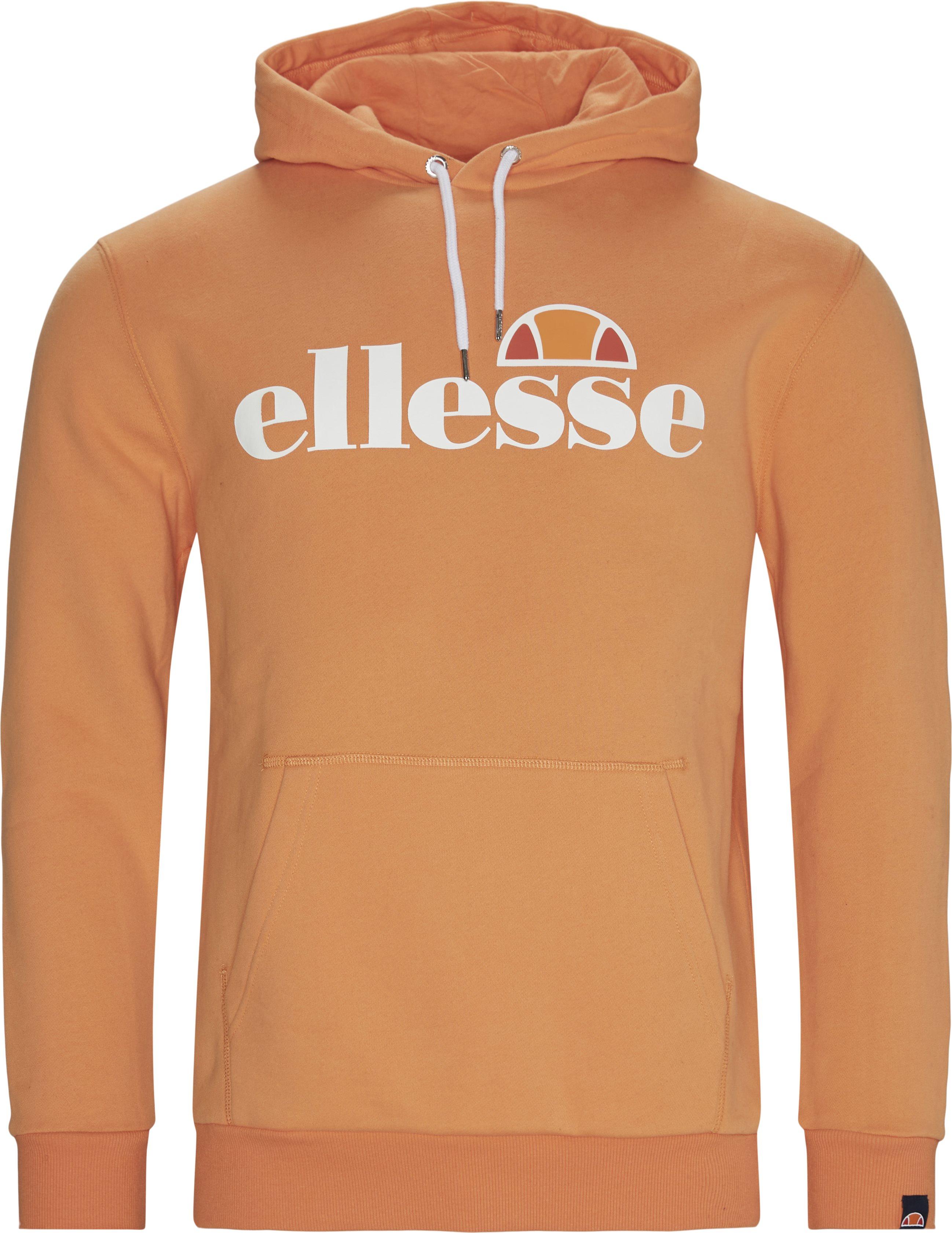 Gottero Hoodie - Sweatshirts - Regular fit - Orange