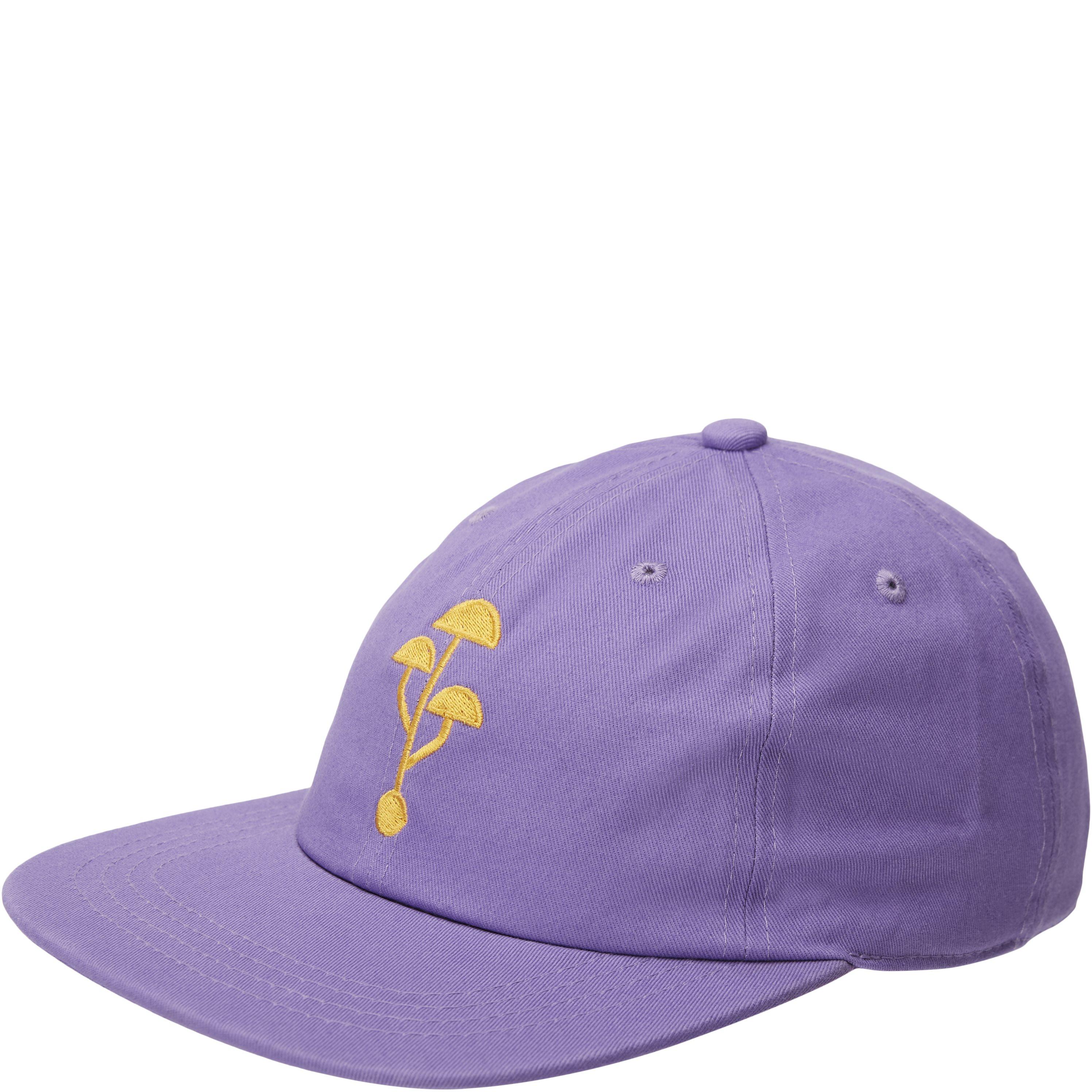 Caps - Lilac